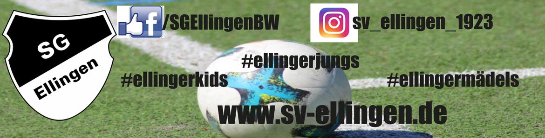 Fußball   Herren   SG Ellingen