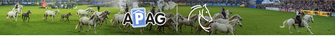 Parking tickets for World Equestrian Festival CHIO Aachen 2021